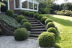 architetto di leo leonardo arte dei giardini arte topiaria